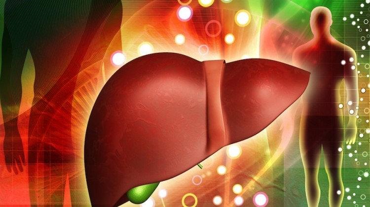 Tìm hiểu các loại bệnh viêm gan cấp tính, mãn tính và cách phòng ...