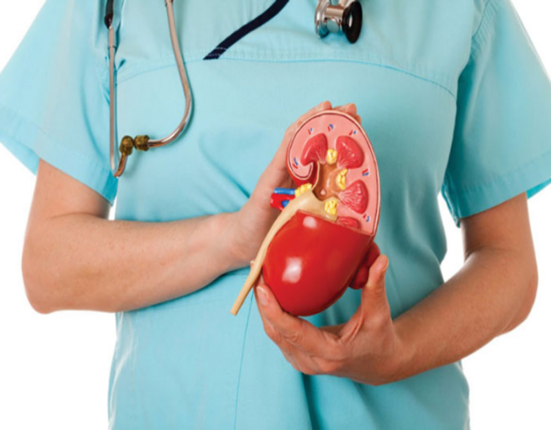 Nguyên nhân, triệu chứng và cách phòng ngừa sỏi thận | Sức khỏe | PLO