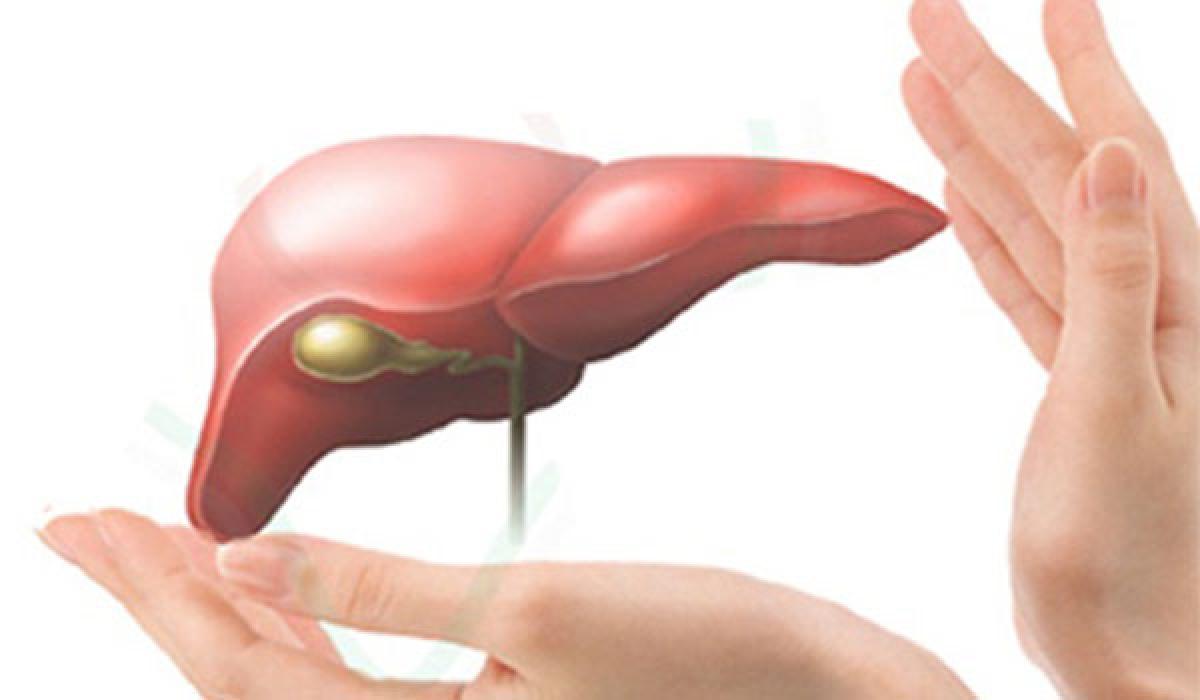 Bệnh viêm gan là gì? Những điều cần hiểu biết về bệnh viêm gan - Phòng khám  đa khoa - Đại học Nguyễn Tất Thành
