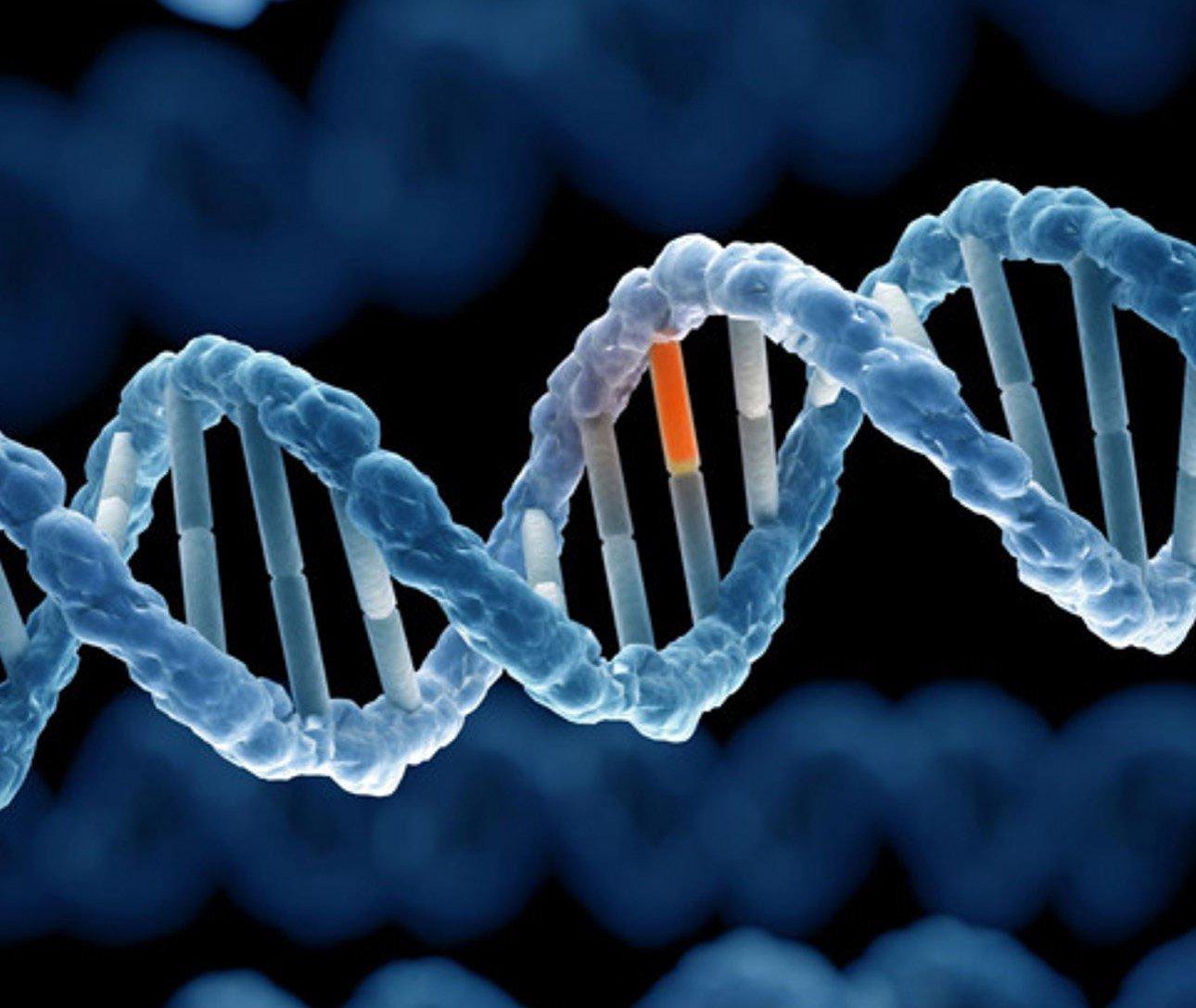 Gen là gì? Rối loạn di truyền là gì? | Vinmec